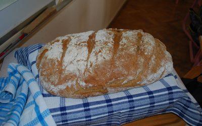 NARAVOSLOVNI DAN – Peka kruha in še kaj